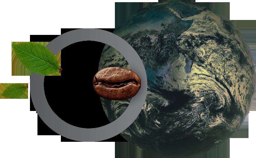 Carpo Circle Represents